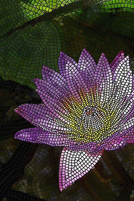 "Giclee print, a mosaic ""Water Lily"" (vert) by Kinnally"